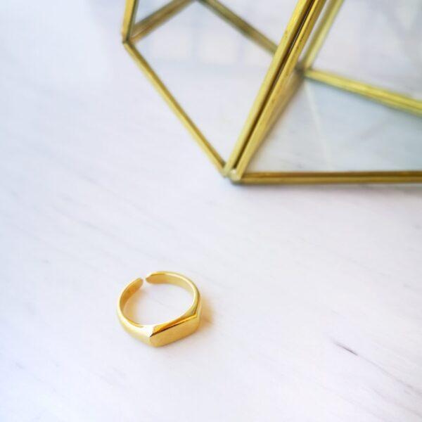 Signet Ring Rectangle